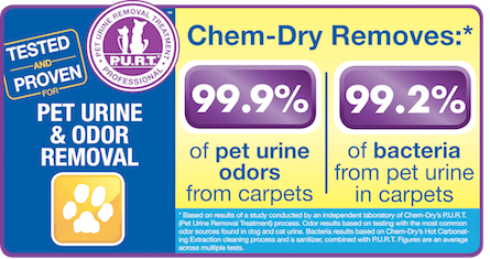 Chem-Dry by Leonard removes pet urine and odors in San Francisco CA
